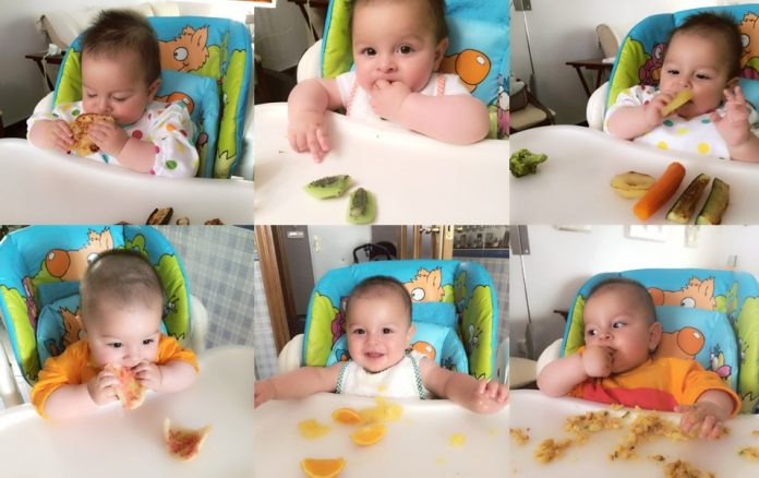 Primeros pasos del baby led weaning