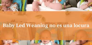 Baby led weaning no es una locura