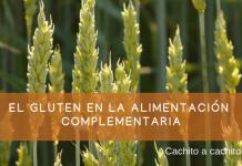 el gluten en la alimentación complementaria