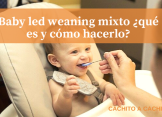 baby led weaning mixto