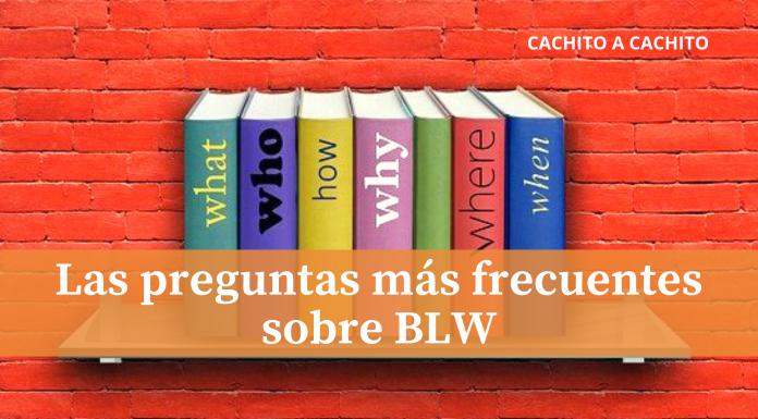Las preguntas más frecuentes sobre BLW